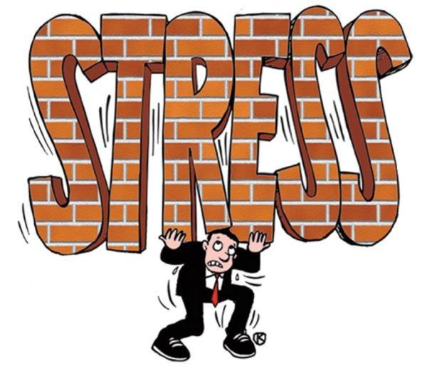 Stress là gì? 1